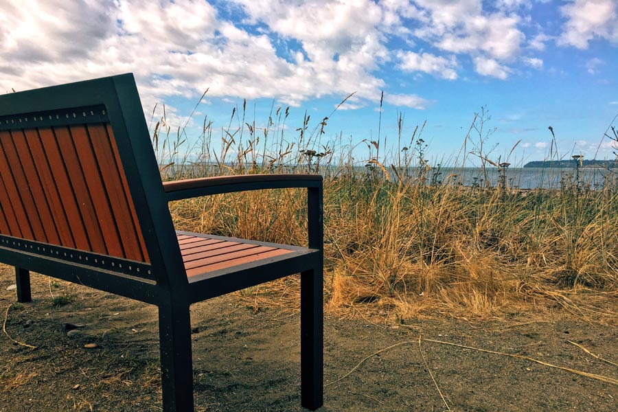 Bench on beach trail
